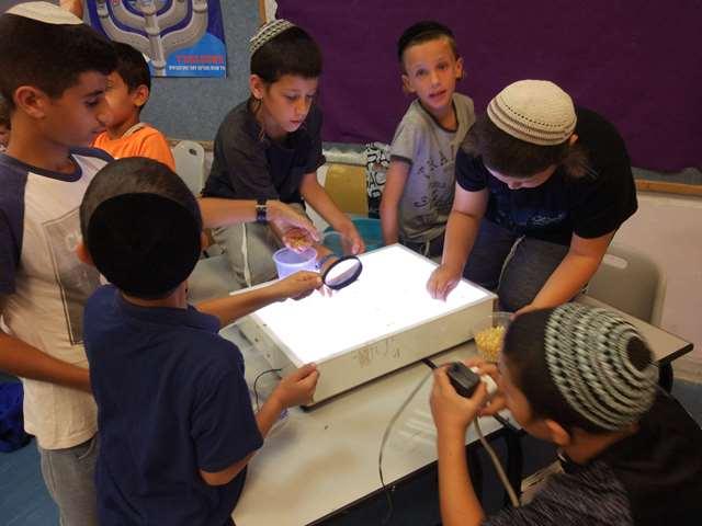 הילדים בודקים את המזון מחרקים